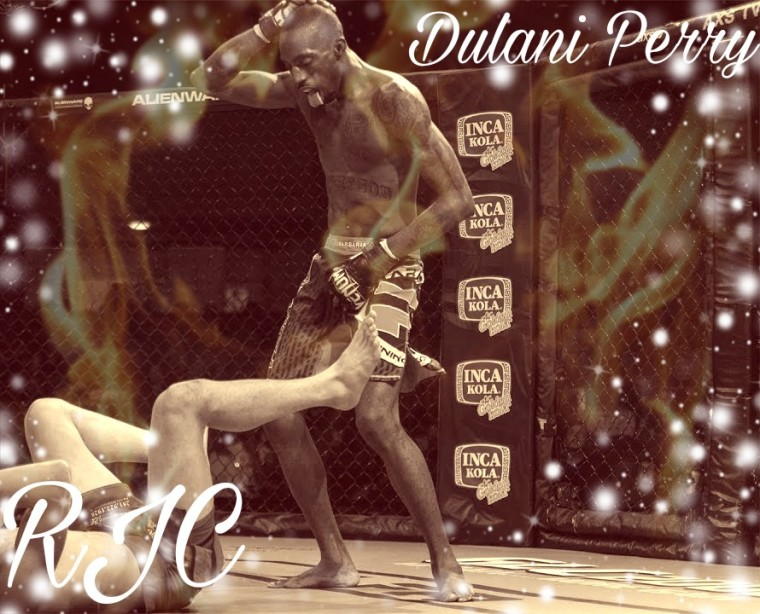 Dulani Perry
